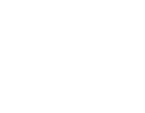 SAP Technology Consulting
